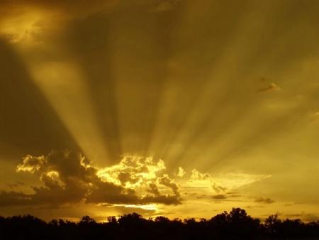 Glorious Golden Rays*