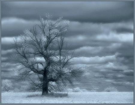 I felt a breath of melancholy......