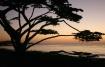 Carmel Sunset