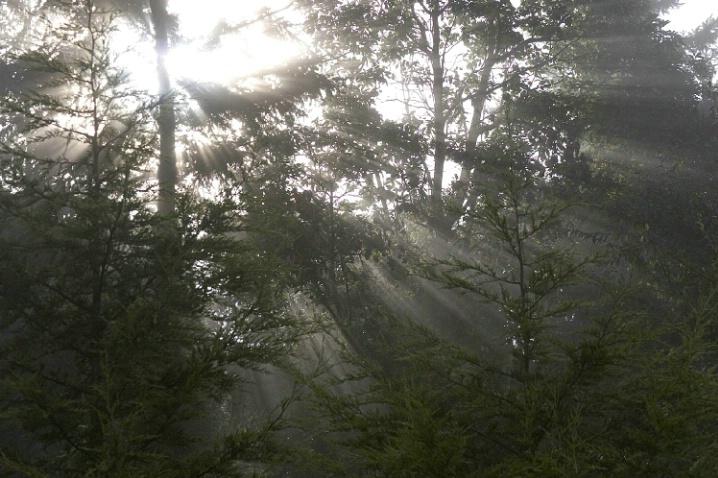 A Glorious Day Dawning - ID: 1917357 © Jim Miotke