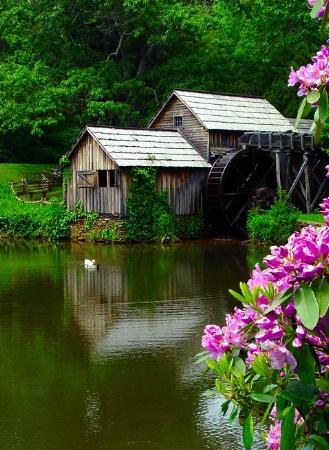 Mabry's Mill*
