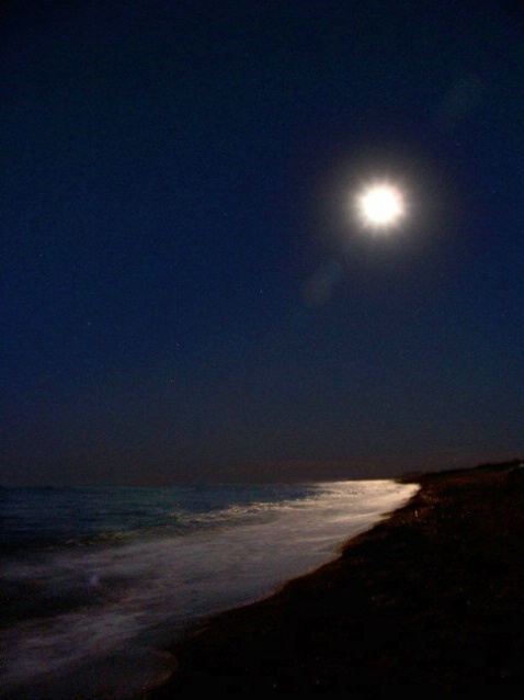 Night time shore in MX