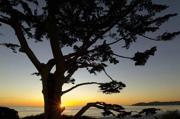 Coastal Silhouette-Horiz.