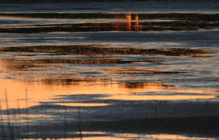 Sunset Shapes - ID: 2994272 © Frieda Weise