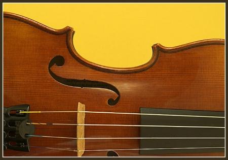 Jaclyns Violin
