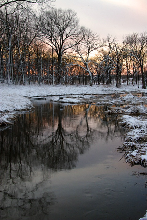 Winter at the Arb