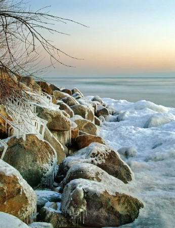 rocky shore at dawn