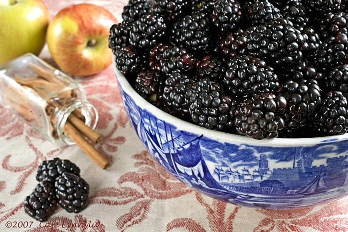 Blackberry Apple Still Life
