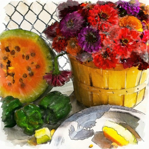 Zinnias, Watermelon, Peppers - ID: 4361406 © Karol Grace