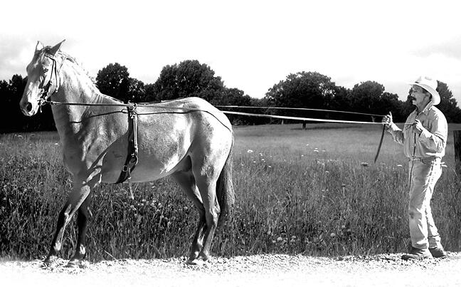 Highkey Cowboy