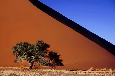 Approaching Dune