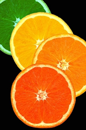 Diversity of Citrus