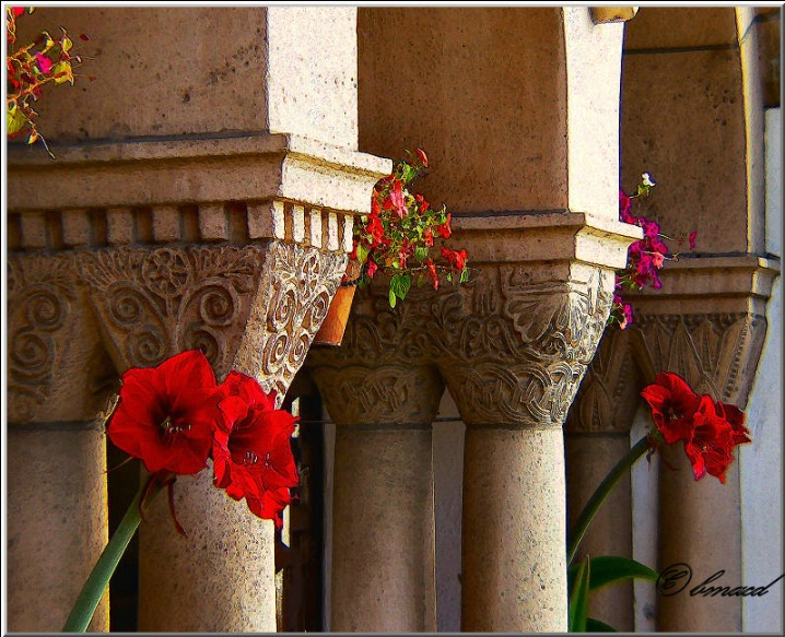 Columns and Flowers