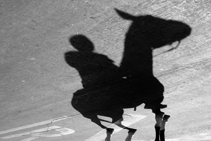 Shadow of the Stables - ID: 7252565 © Mary B. McGrath
