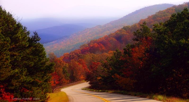 On The Road - ID: 9248333 © Carolyn  M. Fletcher