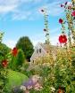 chatham garden