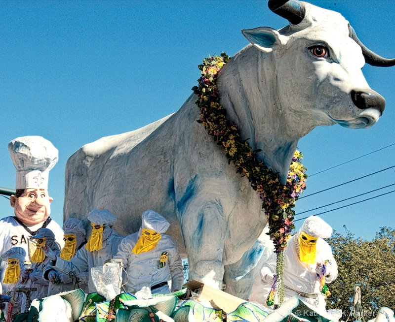 Le Boeuf Gras traditional Rex float