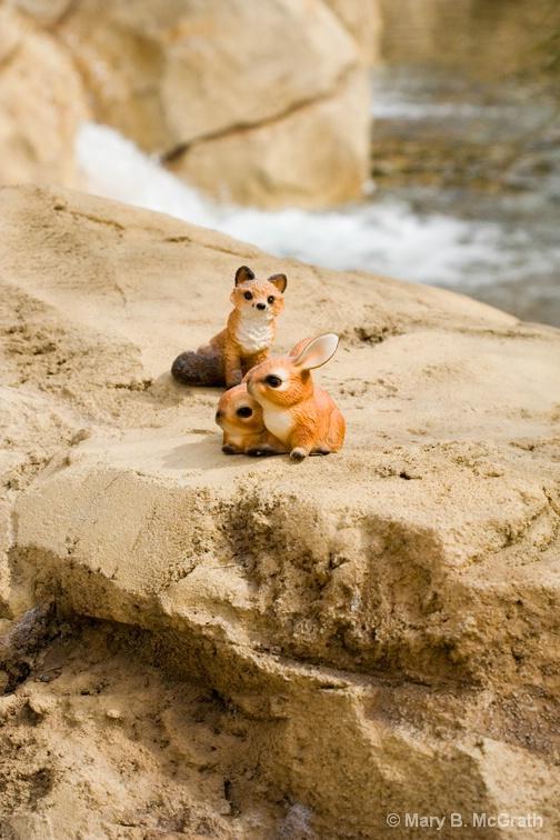 Fox and Hares - ID: 9828706 © Mary B. McGrath