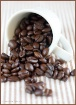 Coffee Bean Still...