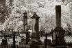 Magnolia Cemetery...