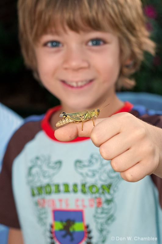 A Boy & His Grasshopper