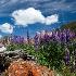 2Red Rock - ID: 10929241 © Jim Miotke