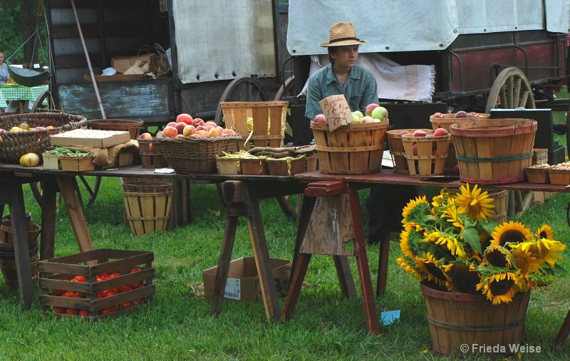 apples-25 cents each - ID: 11389807 © Frieda Weise