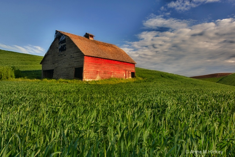 The Red Barn - ID: 11877651 © Anne Hickey