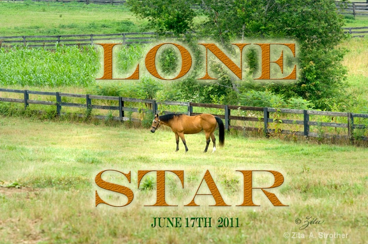 web-lonestar-01-zita6-17-2011 - ID: 11884661 © Zita A. Strother