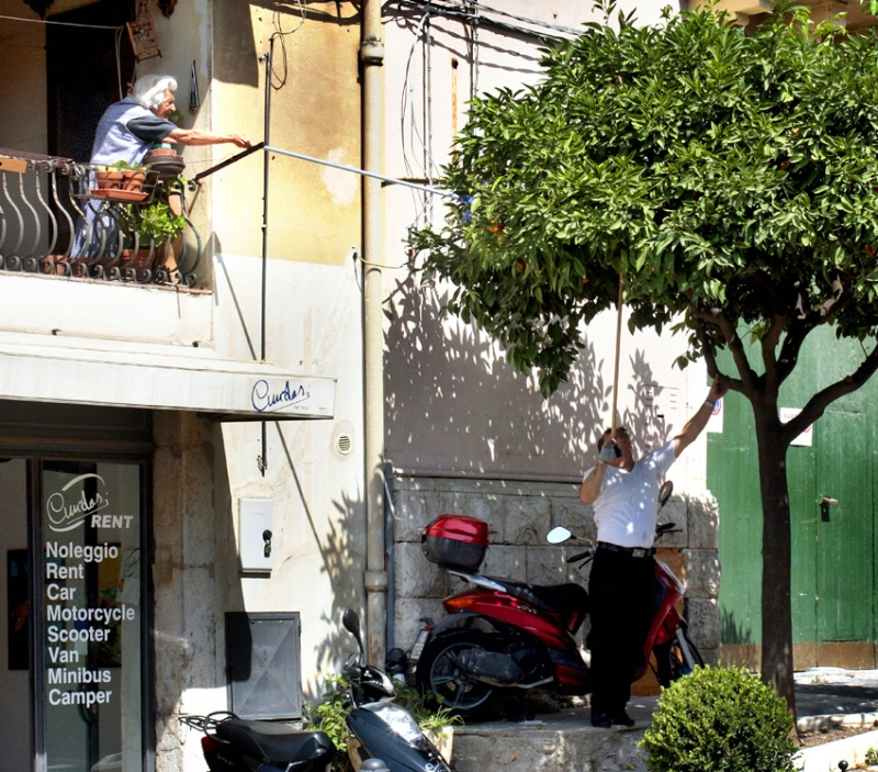 Lust for Oranges in Taormina