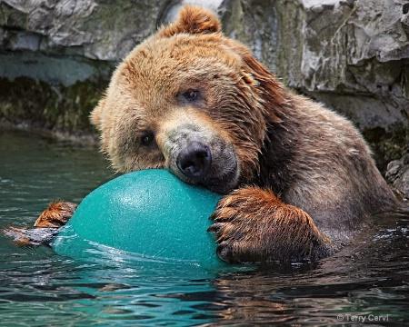 It's my ball!