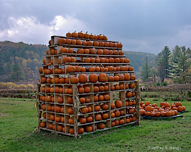 """""""House Of Pumpkins"""""""