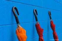 Umbrellas & Blue Wall