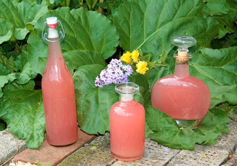 Rhubarb Juice - homemade
