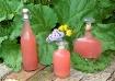 Rhubarb Juice - h...