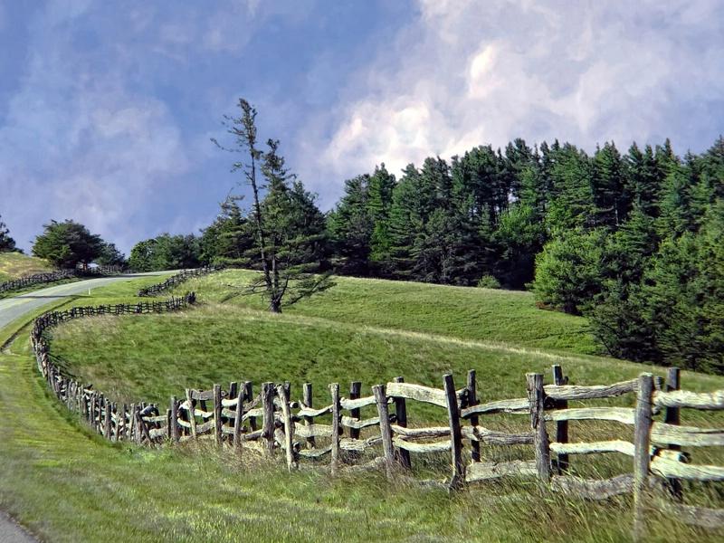 Follow The Fences - ID: 13946387 © Carolyn  M. Fletcher