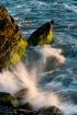 Rocks, Moss & Sur...
