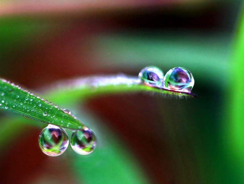 Double Double Droplets