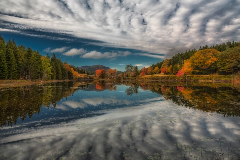 Cloud Reflection - ID: 14696286 © Anne Hickey