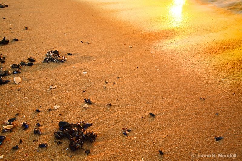 Detailed beach scene at sunrise
