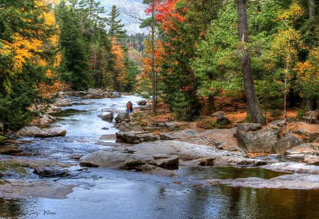Hiking Wildcat River