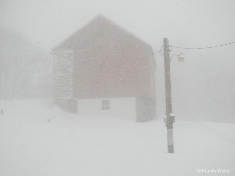 Snowed in - ID: 15081421 © Frieda Weise