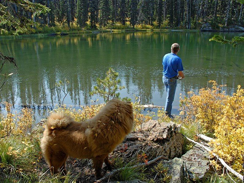 ~gone fishing~