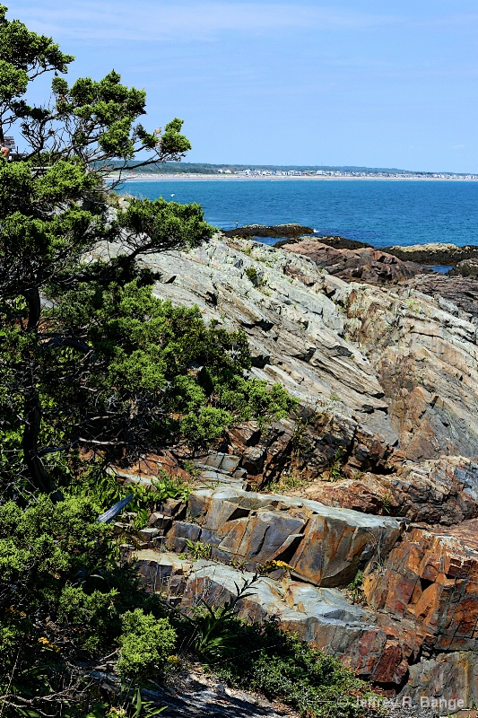 """""""Rocky Coastline Of Maine"""""""
