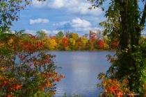 Across Lake Carnegie