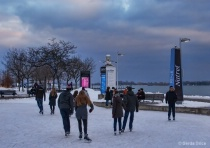 A Winter Evening at Harbourfront