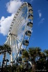 """Sky Wheel..."