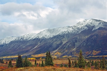 Yukon Tundra