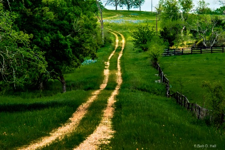 Up A Texas Hill