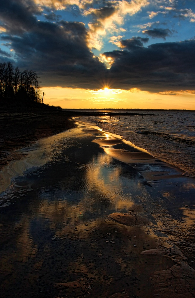 Mud, Water and Sunset - ID: 15487787 © Carolyn  M. Fletcher